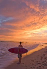 ANANDA SURF